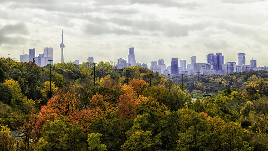 Five of the Best Fall Wedding Venues in Toronto