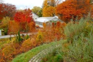 Outdoor Weddings, Toronto wedding venue, Toronto Botanical Gardens Events